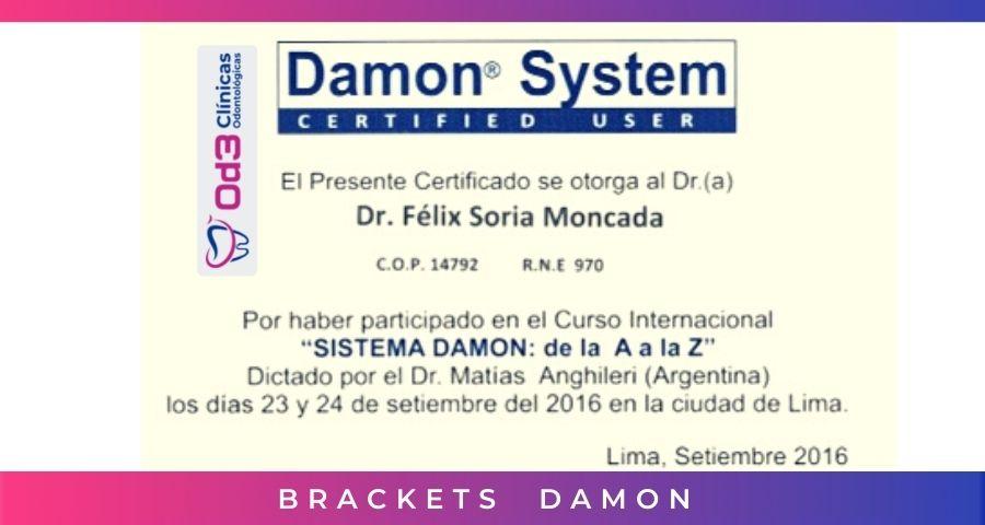 LIMA  BRACKETS DAMON SYSTEM